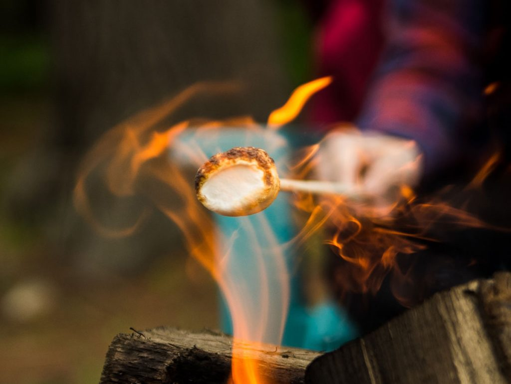 Camping is back! We've missed roasting marshmallows.