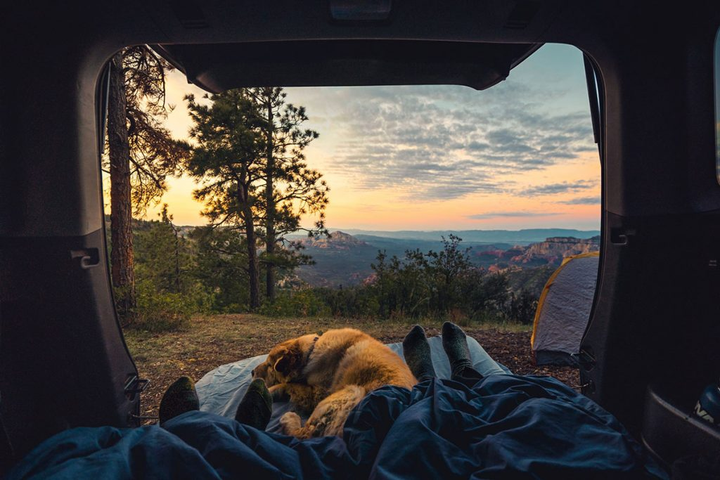What is #VanLife? And is it for me? View from a campervan.